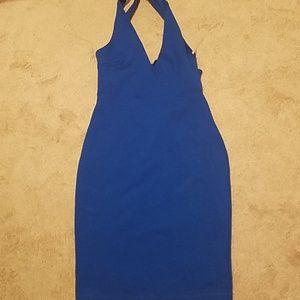NWT Windsor dress